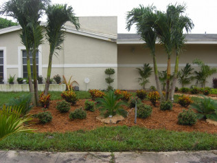 Landscapers, Landscaping, Mulching<br/>Davenport, FL and Clermont, FL